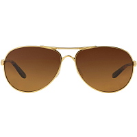 Oakley FEEDBACK Pol Choc w/Brown Grad Polar